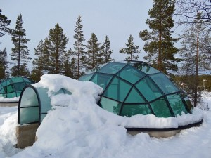 qriosando igloo